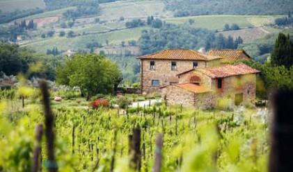 Селските имоти се върнаха на нива от 2009 г.