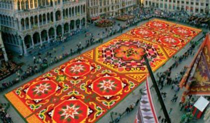 СИБАНК пренася прочутия белгийски цветен килим в София