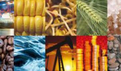 Очаква се поевтиняване на пшеницата и царевицата