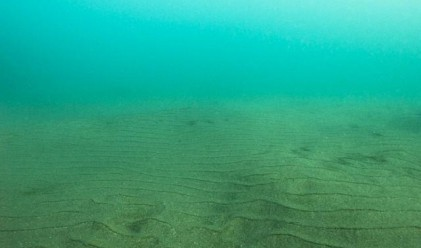 Откриха огромни залежи от редки минерали в Тихия океан