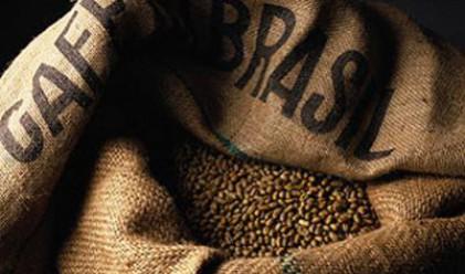 Кафето постави рекорд и по износ, и по цена