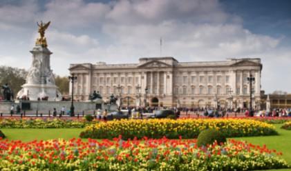 Кралското семейство е поскъпнало с половин паунд на човек