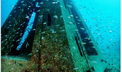 Богатите ще могат да си купуват и частни коралови рифове