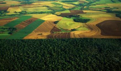 Агро Финанс с 43.2 млн. лв. инвестиции в земеделска земя