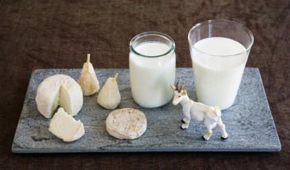 Мляко от Момчиловци - хит в Китай