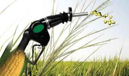 Нерационално захласване по био-горива