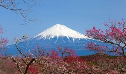 Топ 10 на нещата, които можете да правите в Япония