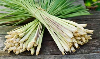 19 храни, които чистят отрови от тялото ни