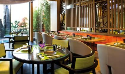 Топ 5 на ресторантите в Монако