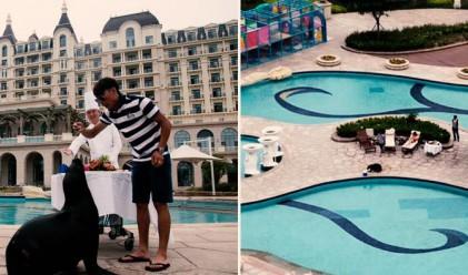 Китаец нае цял петзвезден хотел за рожден ден на морски лъв