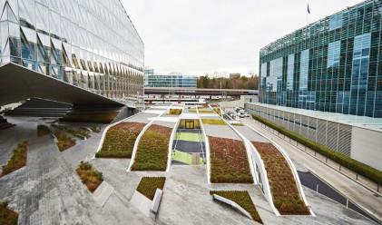 Този зелен покрив не просто свързва две бизнес сгради