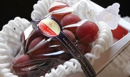 Защо 30 зърна грозде в Япония струват милиони йени?