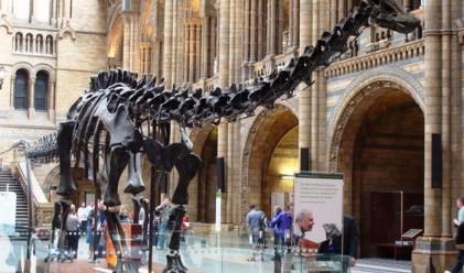 15-те най-интересни и посещавани музеи в цял свят