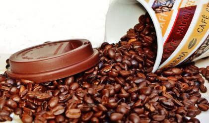 На война с хартиените чаши, или вредите от пиенето на кафе