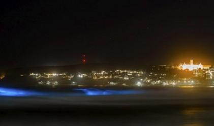 Тези плажове светят в неоново синьо нощем