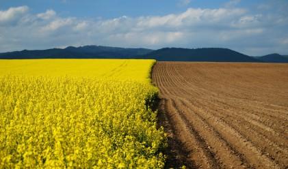 Земеделската земя носи 100% доходност в 18 области на България