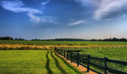 По-малко договори за аренда на земя, цената расте