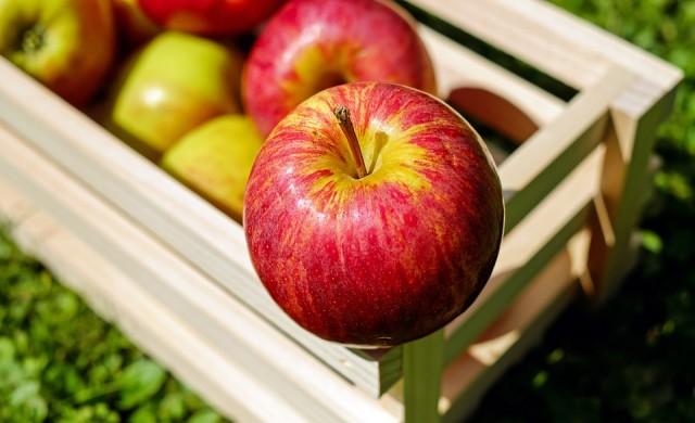 10 любопитни факта за ябълките