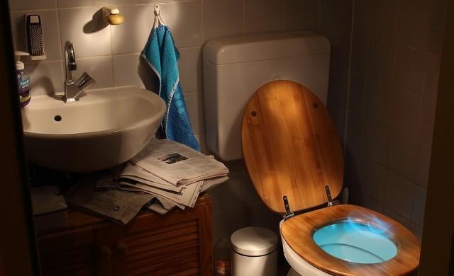Полицията в САЩ:Не пускайте дрога в тоалетната заради алигаторите