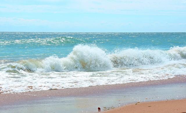 На плаж до АЕЦ. Отново туристи във водите на Фукушима
