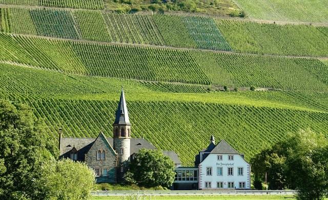 Най-добрата страна за почитателите на виното
