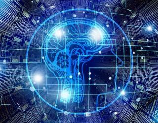Илън Мъск ще тества свързването на човешкия мозък с компютър