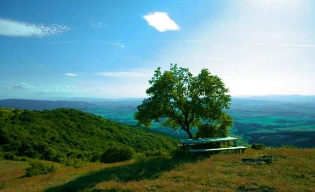 На крачка от столицата: Пет интересни места в Люлин планина