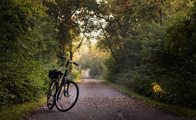 България е в Топ 5 на производителите на велосипеди в ЕС