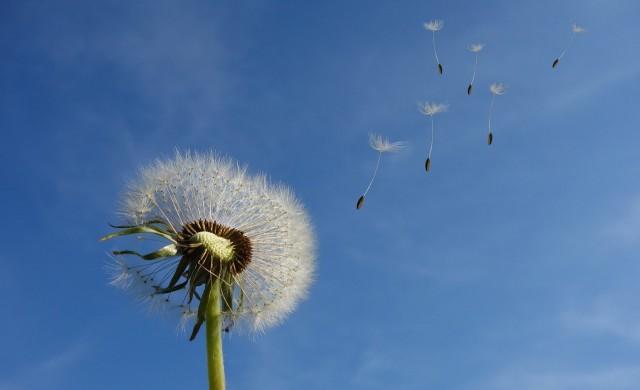 Жълт код за силен вятър, днес ще е прохладно