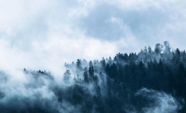 Огромни мрежи улавят мъглата и я превръщат във вода в Мароко
