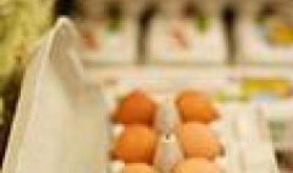 Най-скъпи са захарта, фасулът и яйцата в Пловдив, най-евтини кашкавал, ориз и захар има в Пазарджик