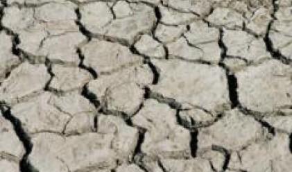 Хиляди декари с пролетни култури изгоряха в Добричко заради сушата