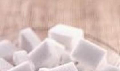 Консолидираната печалба на Захарни Заводи нараства над 10 пъти