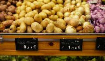 Плодове и зеленчуци продължават да поевтиняват