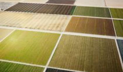 Станишев обсъди с МЗХ финансирането на селското стопанство