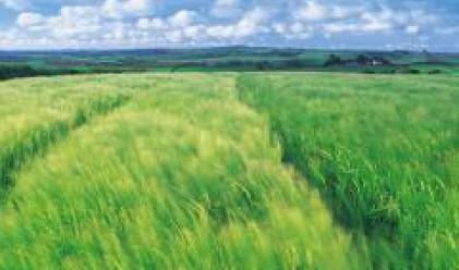 Към края на юни Адванс Терафонд притежава 243 000 дка земеделска земя