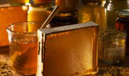 Пчеларите в страната ще бъдат стимулирани с над 7 млн. лв. за следващите 3 г.