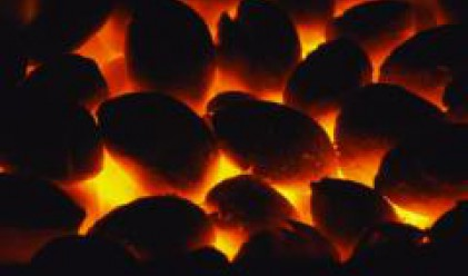 Coal Production Increases by 2.5 Mln T from 2006