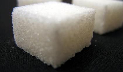 Захарта удари максимума за 20 г.