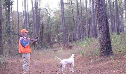 Откриват ловния сезон