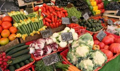 Международната статистика доказва контрабанда със зеленчуци