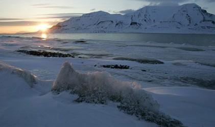 Битка за арктическите богатства
