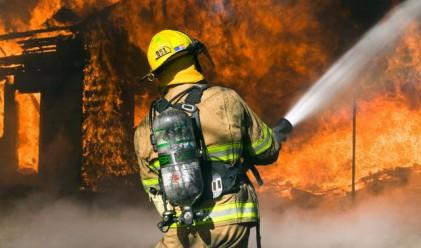 15 млрд. долара струват пожарите на Русия