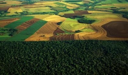 Най-големите фондове купуват земя в Северозападна България