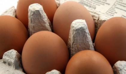 Яйцата поскъпнаха