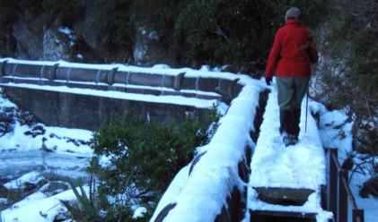 Нова Зеландия затрупана от най-тежкия снеговалеж от 1970