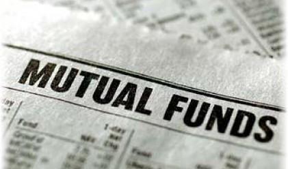 Връзката между кеша на фондовете и S&P 500