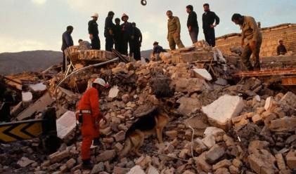 Жертвите на земетресенията в Иран вече са 250