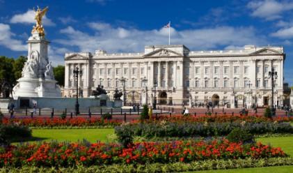 Бъкингамският дворец в цифри