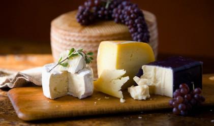 Цената на сиренето - от мандрата до потребителя